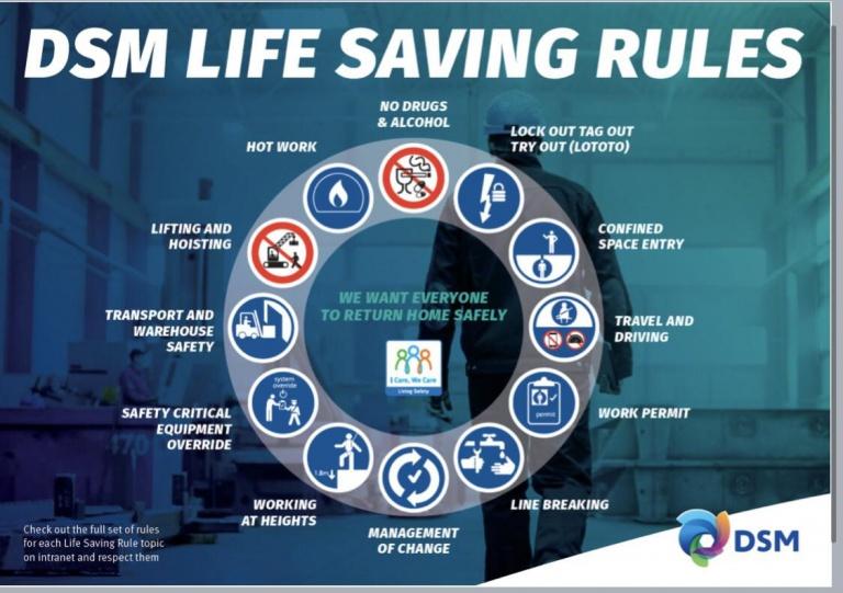 DSM Life Savind Rules